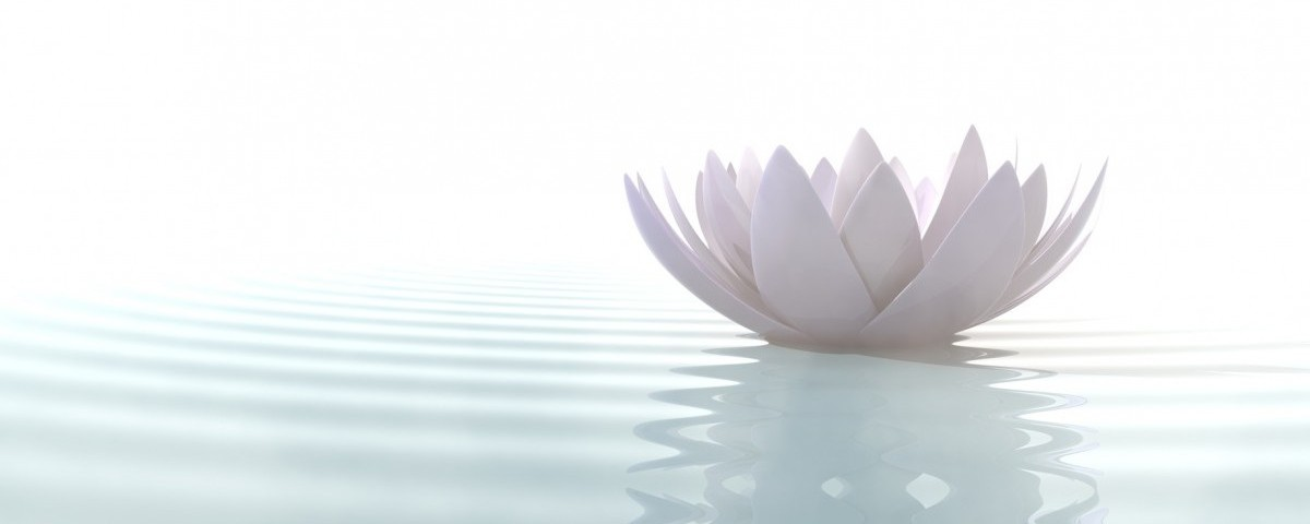 Zen lotus flower in water